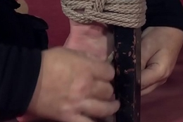 Handcuffed sadomasochism sub tied up and and toyed